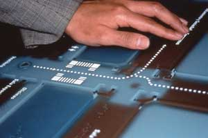 A tactile graphic map guiding sighted and visually impaired visitors through the exhibit