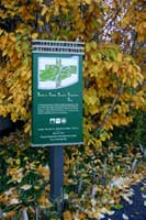Billboard map part of the sign system in Teardrop Park | CRA sign system design and consulting services
